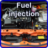 Fuel injection maintenance service